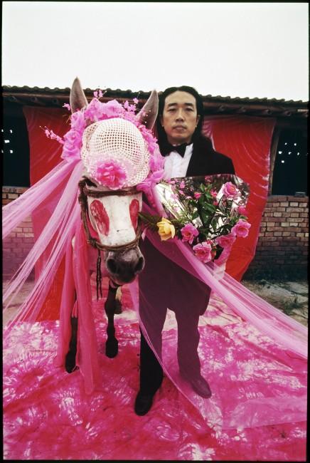 Zaślubiny z mulicą